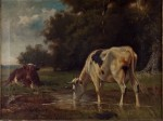 Untitled - cows